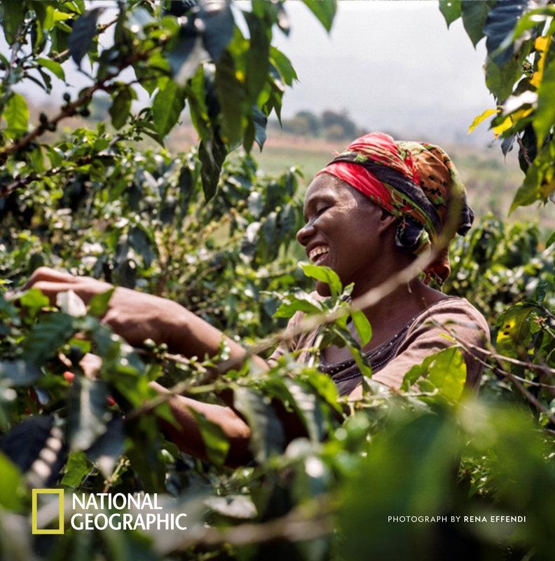 """Nespresso bringt mit """"Reviving Origins""""-Programm verloren geglaubte Kaffees zurück"""